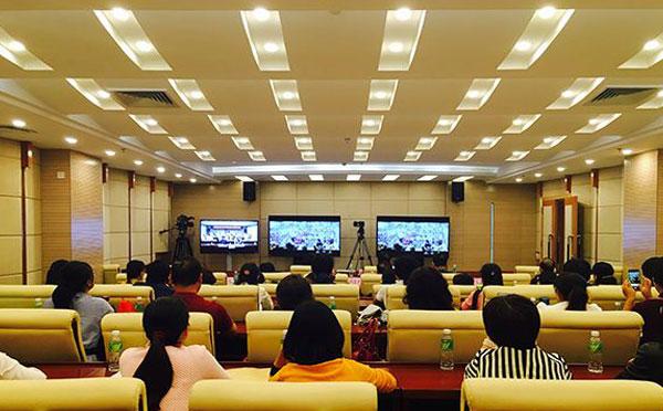 便携式视频会议系统